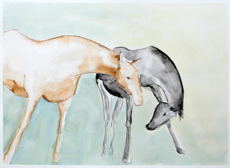 Terschellinger paarden.