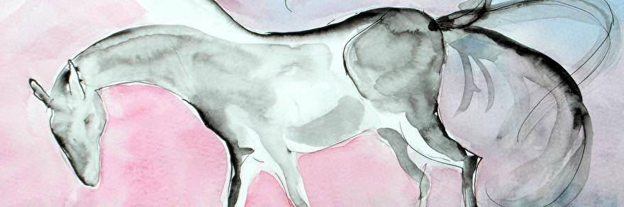 Tekening wild paard.© Clara Miedema