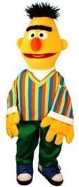 Sesamstraat Bert 65 cm
