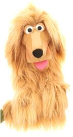 hond Lulu W137
