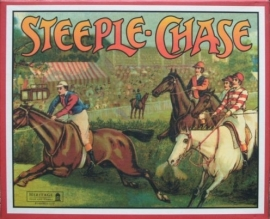 Steeple chase 2890