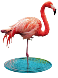 I AM flamingo 100 stuks