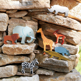 set safari in kastje