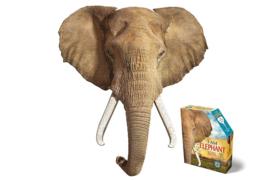 I AM olifant 700 stuks