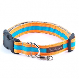 Double Ribbon Stripe NEON ORANGE-AQUA STRIPE