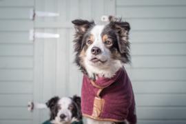 Hondenbadjas BORDEAUX