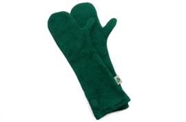 Drooghandschoenen Groen