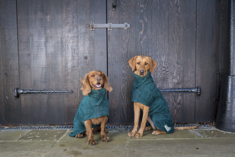 Hondenbadjas GROEN