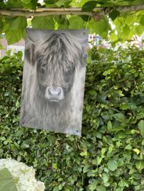 Tuinposter stoere Hooglander Jong