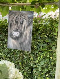 Tuinposter Stoere Hooglander