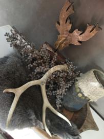 Hertengewei White Tail Deer 1