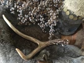 Hertengewei White Tail Deer 6