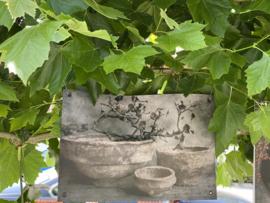Tuinposter stoere klei schaal