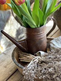 Roestige ijzeren bloemengieter/vaas