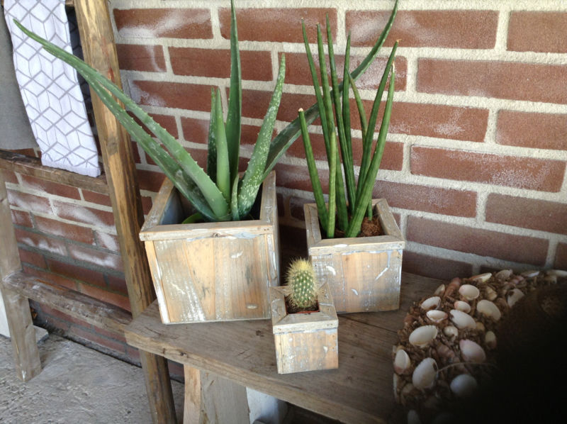 Houten plantenbak cement L