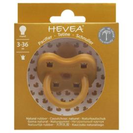HEVEA TUMERIC 3-36MND ROND