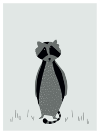 TRIXIE BABY POSTER - MR. RACCOON