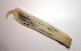 Skunk Tail natural