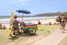 Stray Australia Sydney - Cairns incl. Tours