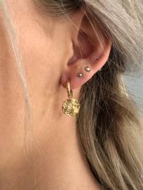 RVS oorbellen (stainless steel), rondje aan ringetje. goudkleurig.
