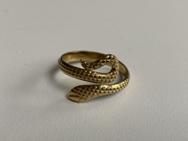 Stainless steel (RvS) ring. 'Snake'. Goudkleurig.