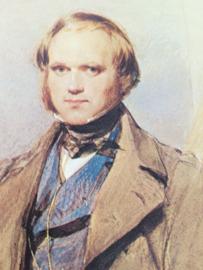 Boeken | Geschiedenis | Wereld | Darwin en de beagle: een scheepsreis naar de oertijd
