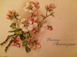 1927 | Verjaardag | antieke briefkaart Lente bloesem 'Hereux Anniversaire' lieve zoon