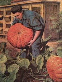 Rustica Pompoen | 21 Mai 1950 - Vintage  Frans tijdschrift over landbouw en dieren