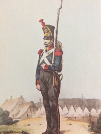 Verzamelkaart leger uniformen nr. 17  | België | Linie-Infanterie | 1831
