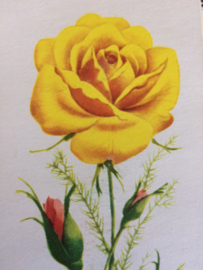Vintage needlebook East Germany with yellow and red Roses  | 50's