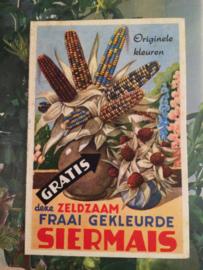 Verzamelplaatje vintage siermais Bloembollen Hillegom 1960