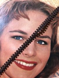 Band | Bruin | Glanzend vintage mooi biesband (0.5 cm)