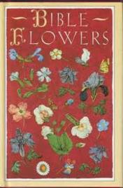 VERKOCHT | Bible Flowers - Jenny De Gex | Pavilion