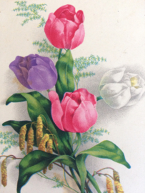 1912 - Antieke briefkaart vaas met tulpen