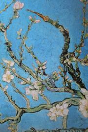 Nederland   Vincent van Gogh 1853-1890