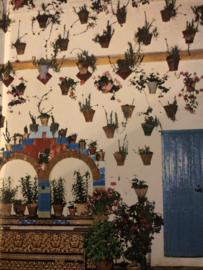 Boeken | Spanje | Andalusie en de Costa del Sol: Tekst van Lucienne en Jesus Rome (icob) - (1985)