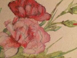 1916 - Antieke briefkaart met handbeschilderde roos ongelopen |  januari