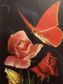 VERKOCHT | 1950 -  Briefkaart Postcard | Supermooie vintage glanskaart roze roos met vlinder C. Nivey Artis C. Vivey