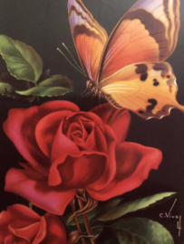 VERKOCHT | 1950 -  Briefkaart Postcard | Supermooie vintage glanskaart rode roos met vlinder Artist C. Vivey