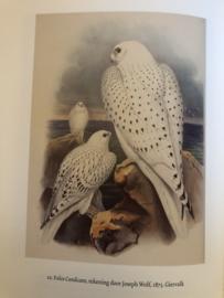 Natuur | De Valk : over valkerij en wilde vogels - Kester Freriks - 2008