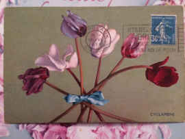 Briefkaarten | Ansichtkaarten | Bloemen