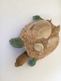 Vintage souvenier schildpad met wiebelhoofdje en staartje | 1982