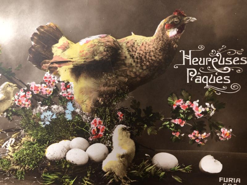 Briefkaarten   Pasen   'Hereuses Paques' FURIA 554 bloemen, kip kuikens en paaseitjes (1915-1920)