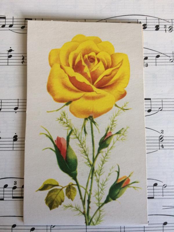 Oostblok | Vintage naaldenboekje met gele en rode roos | jaren '50
