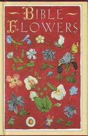 Bible Flowers - Jenny De Gex | Pavilion