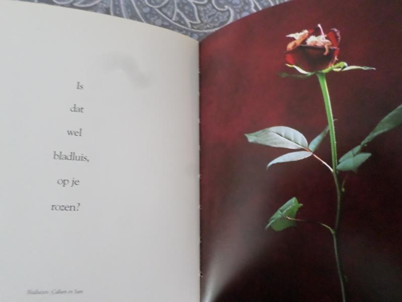 Boeken | Kunst | Hongarije | A rózsa dicsérete - A Celebration of Roses