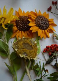Patroonblad Zonnenbloemen