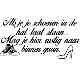 Als je je schoenen