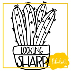 Looking sharp | Strijkapplicatie