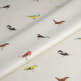 Geplastificeerd katoen - Tuin vogels